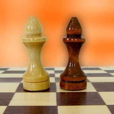 слон шахматная фигура